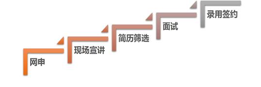校招流程图.png